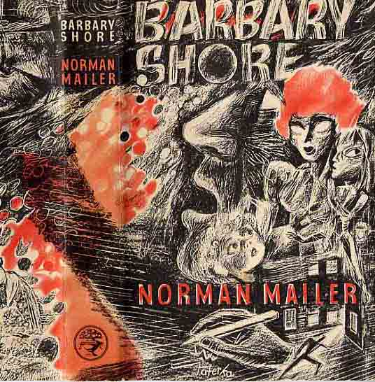Image for Barbary Shore