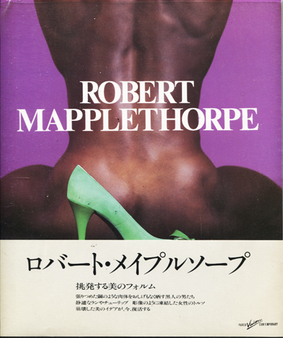 Image for Robert Mapplethorpe